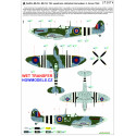 P-47D Thunderbolt Bubbletop - Basic Line 1/48 - 148808