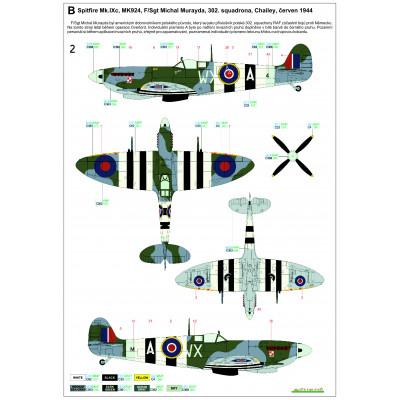 P-47D Thunderbolt Bubbletop - Basic Line 1/48 - 148808