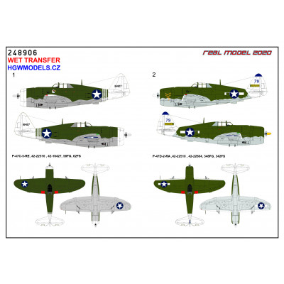 P-47 D Razorback OVER NEW GUINEA - 1/48 - 248906