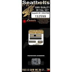 Sopwith 5F.1 Dolphin - Seatbelts 1/32 - 132599