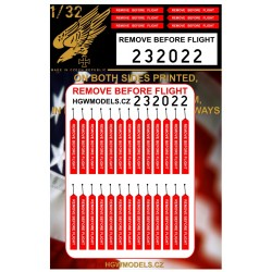 Remove Before Flight - Easy Belts 1/32 - 232022