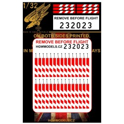 Remove Before Flight - Easy Belts 1/32 - 232023